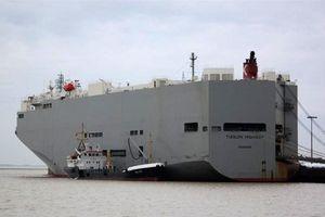 Khử trùng toàn bộ tàu biển chở ô tô có thuyền trưởng tử vong