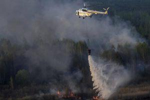 Cháy 20ha rừng tại 'vùng cấm hạt nhân' ở Chernobyl, Ukraine