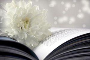 'Ngọc lành có vết, việc đời đa đoan', hỏi sao con người cứ mãi 'chấp mê bất ngộ'?