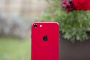 Lộ thêm bằng chứng cho thấy iPhone 9 và iPhone 9 Plus đã cận kề ra mắt