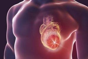 Suy tim sung huyết: Định nghĩa, triệu chứng và tiên lượng