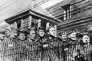 Thí nghiệm sốc của ''bác sĩ tử thần'' làm tay sai cho Hitler