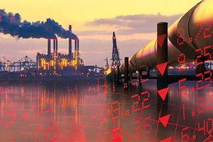 Chứng khoán lội ngược dòng tăng kỷ lục, dầu thô tăng nhẹ