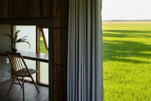 Resort yên bình giữa cánh đồng ở Bà Rịa Vũng Tàu được tờ kiến trúc Mỹ ca ngợi