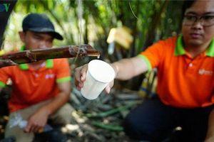 TP.HCM: Chàng kỹ sư bỏ việc lương cao, khởi nghiệp táo bạo với cây dừa nước