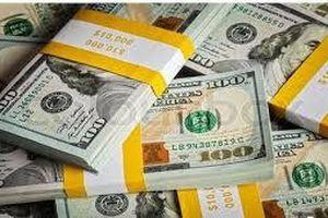 Tỷ giá trung tâm giảm mạnh, giá trao đổi USD cũng lao dốc