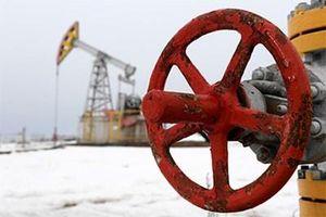 Nga khởi động vòng đàm phán bổ sung để bình ổn giá dầu thế giới