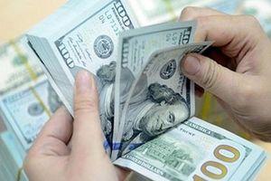 Tỷ giá trung tâm giảm, giá USD đồng loạt giảm tại các NHTM