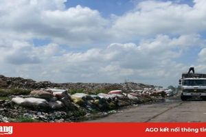 Xử lý triệt để các cơ sở ô nhiễm môi trường nghiêm trọng