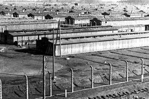 Những hình ảnh rùng mình về 'lò thiêu người' Auschwitz 75 năm trước