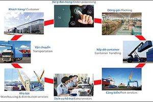 Việt Nam quan tâm phục hồi kinh tế và chuỗi cung ứng sau dịch Covid-19