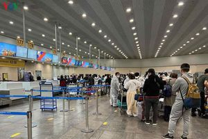 Việt Nam đưa hơn 340 công dân từ Nga về nước