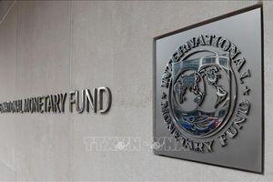 Trên 300 nghị sĩ khắp thế giới kêu gọi IMF và WB xóa bớt nợ cho các nước nghèo