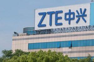 ZTE Axon 11 SE sẽ là điện thoại 5G đầu tiên hỗ trợ cả bốn nhà mạng Trung Quốc