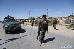 Taliban bất ngờ tuyên bố ngừng bắn tại Afghanistan