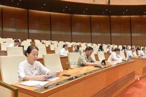 Quốc hội nghe báo cáo thẩm tra dự án Luật sửa đổi, bổ sung một số điều của Luật Bảo vệ môi trường