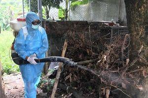 CDC Đà Nẵng thông tin về kết quả điều tra, giám sát, xử lý ca bệnh do virus Zika