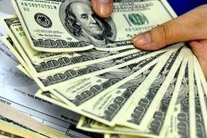 Giá vàng 26/5 quay đầu tăng nhẹ, quy mô tài sản của Fed vượt 7.000 tỷ USD