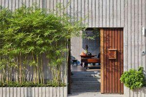 Trồng 12 loại cây phong thủy này trước cổng nhà để chiêu tiền tài