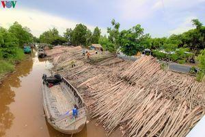 'Chợ tràm' nơi đất rừng U Minh hạ