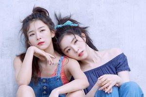 Nhóm nhỏ Irene - Seulgi vừa được khen logo quá đẹp đã bị nghi đạo nhái
