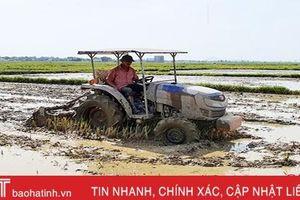 UBND tỉnh Hà Tĩnh yêu cầu kết thúc gieo cấy lúa hè thu trước 10/6