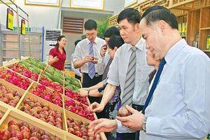 Xuất siêu 3,3 tỷ USD, nông sản tiếp tục 'khai hoang' thị trường mới