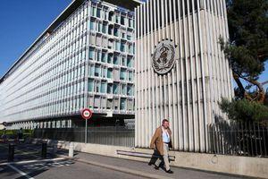 Liên minh châu Âu muốn Mỹ cân nhắc lại quyết định rút khỏi WHO