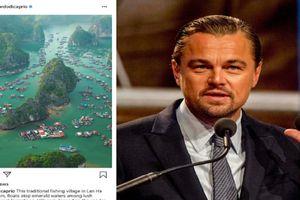 Leonardo DiCaprio kêu gọi bảo vệ môi trường ở vịnh Lan Hạ