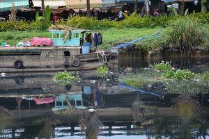 TP.HCM: Những dòng kênh đã được đầu tư hàng nghìn tỉ đồng để cải tạo, đối mặt tái ô nhiễm