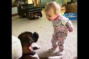 Em bé không ngừng nói chuyện với chú chó 'bạn thân'