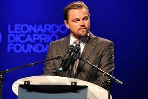 Leonardo DiCaprio nhắc nhở du khách khi đến vịnh Lan Hạ, Hải Phòng