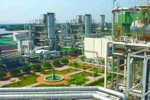 Trung tâm Điện lực Long Sơn dự kiến khởi công vào quý IV/2021