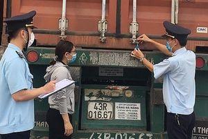 Quảng Trị: Kim ngạch xuất nhập khẩu giảm 41,6%