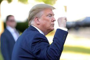 Biểu tình Mỹ: Phe Cộng hòa Thượng viện quyết bảo vệ ông Trump