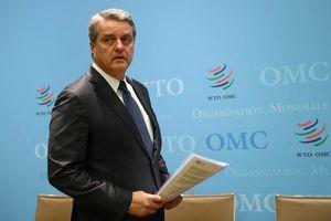Những ứng viên tiềm năng cho vị trí tân Tổng Giám đốc WTO