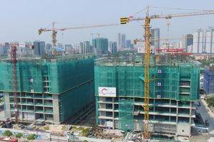 Chủ tịch Coteccons: Không tăng trưởng bằng mọi giá, chỉ lựa chọn dự án tốt