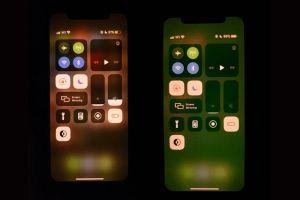 iPhone 11 dính lỗi lạ, chưa khắc phục được