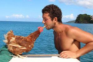 Lạ lùng chàng trai cùng 'người tình gà mái' du lịch khắp thế giới