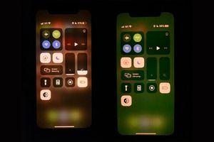 iPhone 11 dính lỗi màn hình xanh khiến nhiều người dùng bức xúc