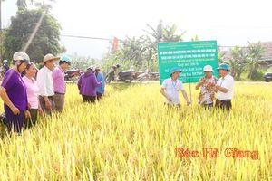 Mô hình nông nghiệp thông minh tăng chất lượng sản phẩm