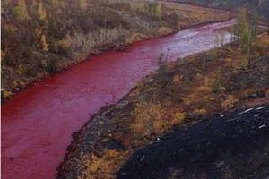 Mỹ đề nghị giúp Nga khắc phục sự cố tràn dầu tại Bắc Cực