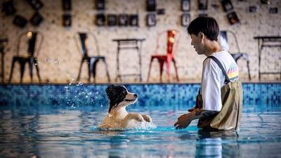 Mạnh tay chi hơn 11 tỷ xây biệt thự cho riêng chó cưng để trả ơn con vật