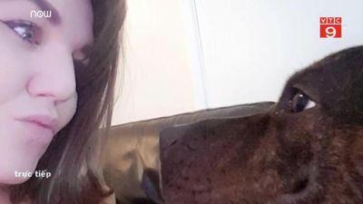 Bị chó nhà cắn xé suốt 40 phút, bà bầu đơn thân sinh non 6 tuần