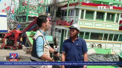 Chồng chéo trong quy hoạch cảng hàng hóa và cảng cá tại Bình Định