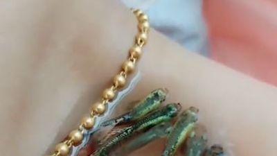 Cô gái 'nuôi' đến 10 con cá ở xương quai xanh