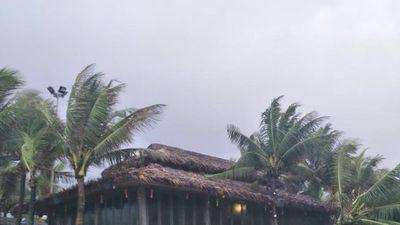 Cận cảnh bờ biển TP. Đà Nẵng bị 'xé toạc' sau cơn mưa gây ngập lịch sử