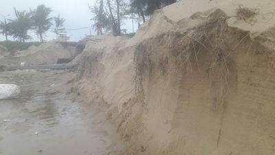 Hơn 3 km bờ biển Đà Nẵng tiếp tục sạt lở nặng