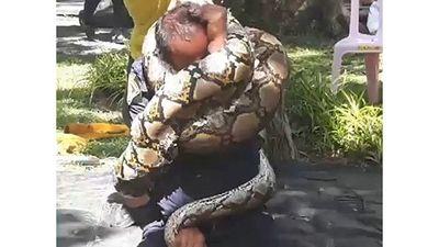 Lính cứu hỏa khổ sở bị trăn dài 5 mét khóa cứng