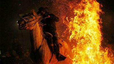 Tuấn mã phi qua lửa 'tẩy trần' trong Lễ Thánh Anthony Tây Ban Nha